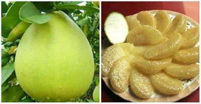 18 công dụng tuyệt vời của quả bưởi trong mùa hanh khô