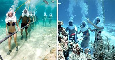 """2 tour du lịch biển mới lạ độc đáo """"đi bộ dưới biển"""""""