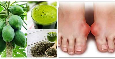 Bài thuốc chữa gout từ đủ đủ và trà xanh hiệu quả