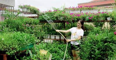 Bí quyết trồng rau sạch trên ban công chưa đầy 3m2