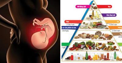 Chế độ dinh dưỡng cho bà bầu ăn vào con không vào mẹ