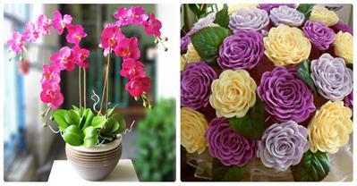 Chia sẻ bí quyết làm hoa giấy chưng Tết cực đẹp