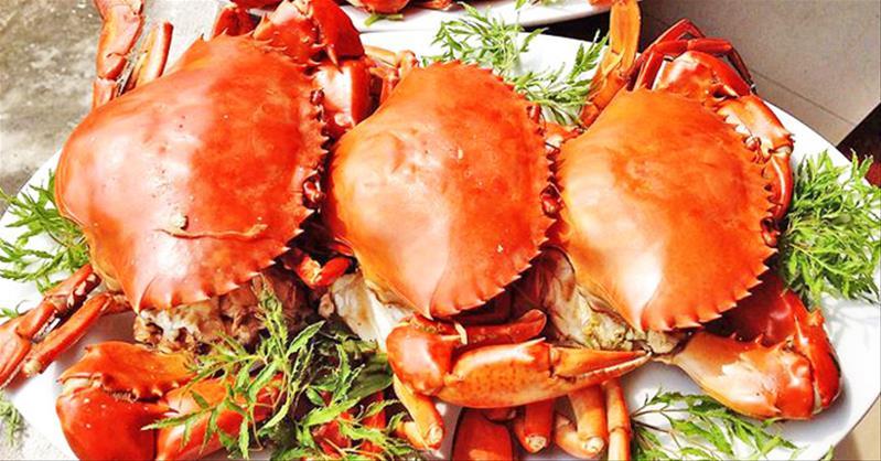 Hải Sản Biển Đông - Đủ loại hải sản trong và ngoài nước