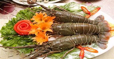 Hải Sản Biển Đông – Phố hải sản tươi sạch từ biển khơi