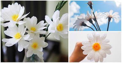 Khéo tay làm hoa cúc họa mi trưng Tết đẹp đến ngỡ ngàng