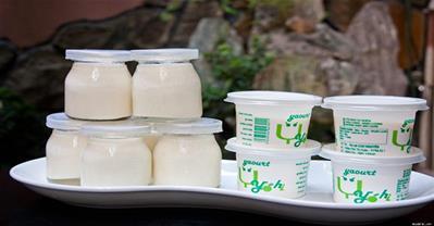 Mẹo làm yaourt tại nhà cực dễ, vừa dẻo lại không găm đá
