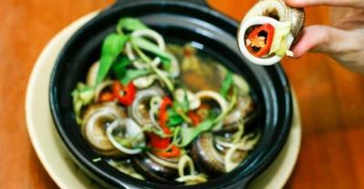 Ốc núi Bà Đen - Loại ốc Tây Ninh chỉ ăn thảo dược quý
