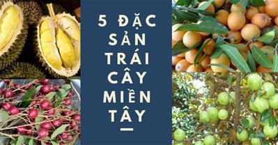 Top 5 đặc sản trái cây miền Tây lạ và ngon khó cưỡng
