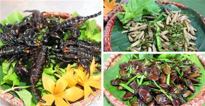 Xôn xao quán nhậu toàn côn trùng độc nhất Hà Nội