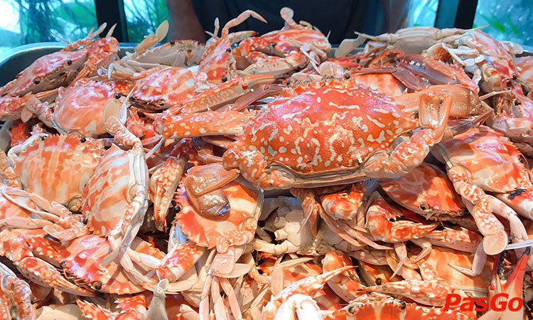 nha-hang-bay-seafood-buffet-hoang-ngan-1