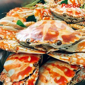 Dragon Sea Buffet MAC Plaza