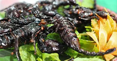 Khám phá các quán ăn ngon - độc - lạ, nổi tiếng nhất ở Hà Nội