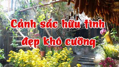 canh-dep--mon-ngon-mien-son-cuoc-kho-cuong--tu-rum-quan-den-pao-quan-pasgo