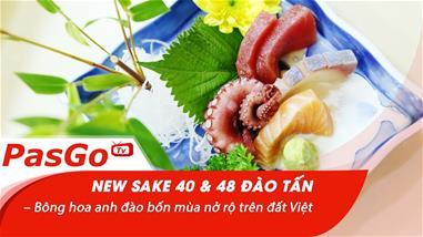 new-sake-40-and-48-dao-tan-bong-hoa-anh-dao-bon-mua-no-ro-tren-dat-viet